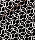 0001901_skew-cube-m-black-white_190