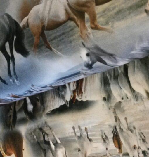 paarden digitale tricot qjutie