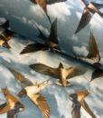 vogels zwaluwen digitale tricot