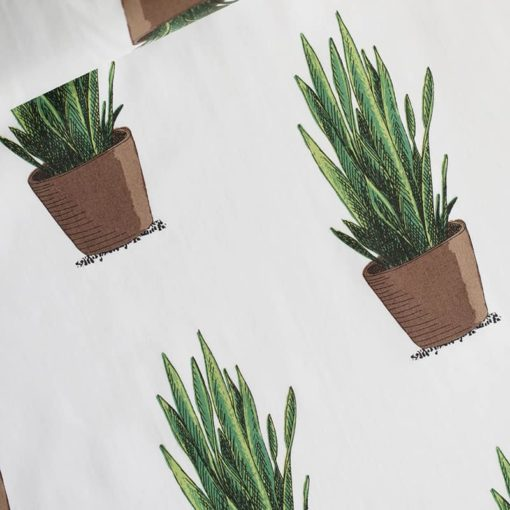 cotton lawn sansevieria see you at six