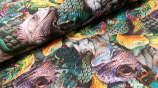 kameleons digitale tricot