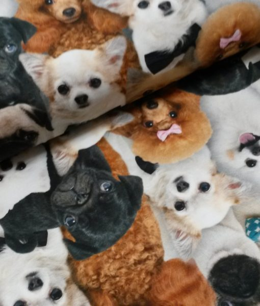 honden digitale tricot