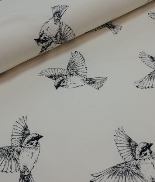 mussen zwart ecru sweattricot ilja fabrics sparrow