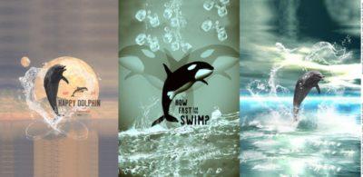 stenzo paneel dolfijnen orka dolphins killer whale