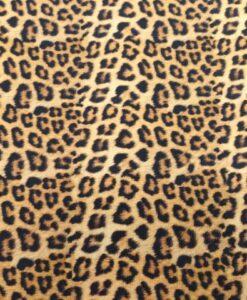stenzo luipaardbvlekken bruin beige