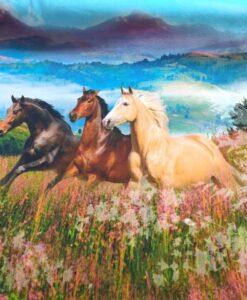 stenzo digitale katenen tricot galopperende paarden
