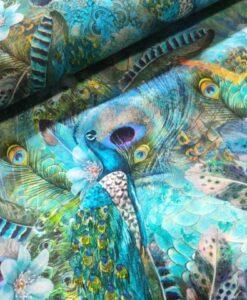 stenzo digitale tricot pauwen veren
